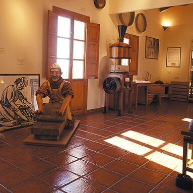 MUSEO CHOCOLATE 1